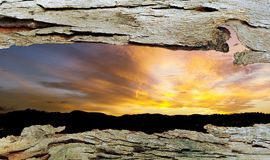 Tree Bark Window to Sunset Stock Photos