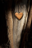 Tree Bark with Wooden Heart Royalty Free Stock Photo