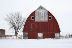 Tree & Barn. A photo of a red barn and tree on winter day in Iowa Stock Photos
