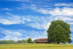 Tree and barn in countryside Royalty Free Stock Photos