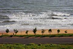 Tree, beach and road along the coast. Royalty Free Stock Photo