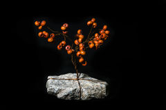 Tree from beads. Tree of beads and wire on flat stone on black background Royalty Free Stock Photos