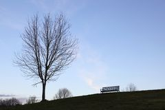 Tree and bench. Concept image of a bare tree and bench silhouetted against a twilight sky Stock Image