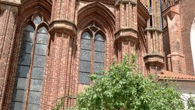 Tree and bench near cathedral. High towers of red brick. Yard of Saint Anne's church. Shelter for wandering souls stock video