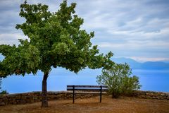 tree bench and ocean royalty free stock photo