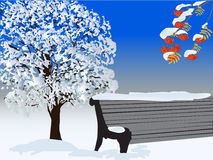 Tree and bench under white snow Stock Photos