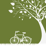 Tree and bicycle Royalty Free Stock Photos