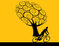 Tree and bicycle rider Stock Photos