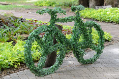 Tree Bicycle Stock Photography
