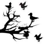 Tree with bird Stock Photo