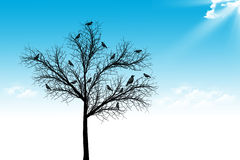 Tree,bird and blue sky Royalty Free Stock Photography