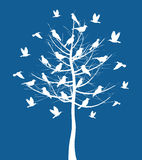 Tree a bird2 Royalty Free Stock Photos