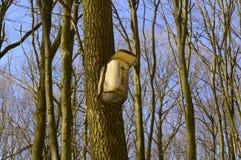 On a tree birdhouse for birds