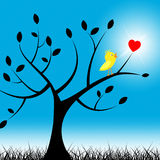 Tree Birds Means Valentine Day And Environment Royalty Free Stock Image