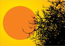 Tree with birds with red sun Stock Photography