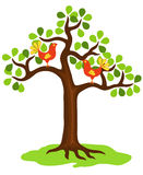 Tree with a birds. Tree with birds sittings on branches Royalty Free Stock Images