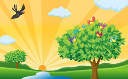 Tree, birds and sun rays vector illustration