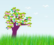 Tree in blossom. Stock Photography