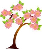 Tree in blossom Stock Images