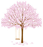 Tree with Blossoms Stock Photo
