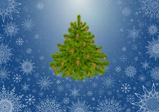Tree_Blu_Background. Background with the fri-tree and  snowflakes Royalty Free Stock Photo