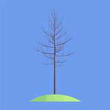 A tree on blue background Royalty Free Stock Photos