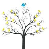 Tree of Blue-bird king. With yellow bird watching stock illustration