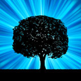 Tree with blue burst template. EPS 8 Royalty Free Stock Photo