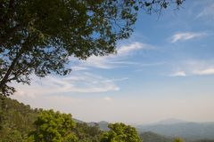 Tree with blue sky and mountain as background - landscape scene.  royalty free stock photos
