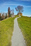 Tree and blue sky near mount Rigi, Alps, Switzerland Royalty Free Stock Photos