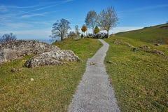 Tree and blue sky near mount Rigi, Alps, Switzerland Royalty Free Stock Photography