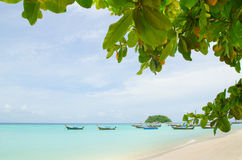 Tree and boat on the sea in thailand. Tree and Boat on sea and beach in lipe island at thailand Stock Images
