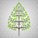 Tree bodhi leaf. Illustrations and background Royalty Free Stock Images