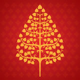 Tree bodhi leaf. Illustrations and background Stock Image