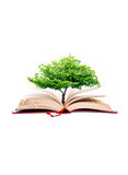 Tree in the book Stock Image