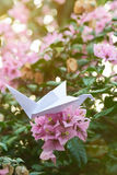 Tree brach with paper crane Stock Photography