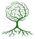 Tree brain concept Royalty Free Stock Photo