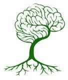 Tree brain concept Royalty Free Stock Photo