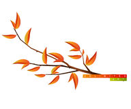 Tree Branch Stock Image