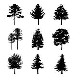 Tree Branch Arid Black Silhouettes Nature Forest Vector Illustration. Design Royalty Free Stock Photo
