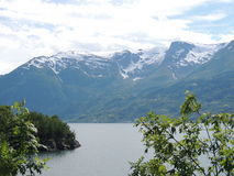 Tree branch with background of a Fjord and snowy mountain Royalty Free Stock Photos