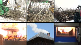 Tree branch crush. Burning wood granules. Smoke rise. Collage stock footage