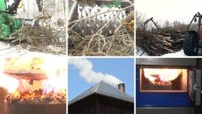 Tree branch crush. Burning wood granules. Smoke rise. Collage stock video