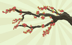 Tree branch with flowers Stock Photos