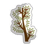 Tree branch isolated icon Royalty Free Stock Photos