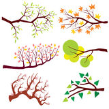 Tree branch with leaves and flowers. Vector set stock illustration