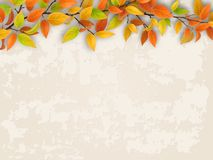 Tree branch on old plastered wall background. Tree branch with red and yellow foliage on old plastered wall. Autumn background royalty free illustration