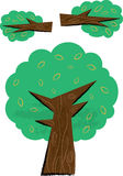 Tree and Branch Parts Children's Illustration Royalty Free Stock Photo