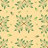 Tree branch pattern Stock Photos