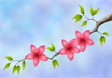 Tree branch with pink flowers and green leaves Stock Photos